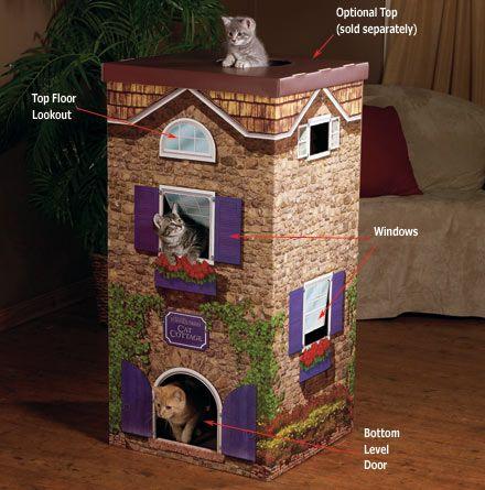 Chata pre mačky