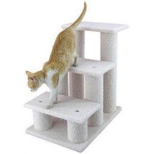 Стълба котка