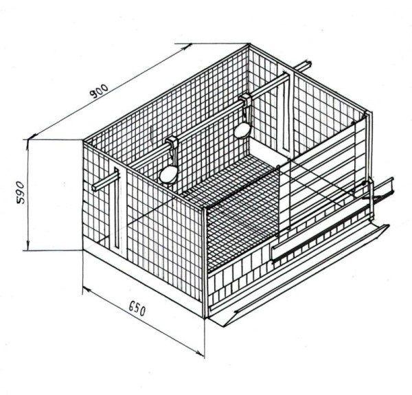 Primjer Sekcija 2-3 kokoši