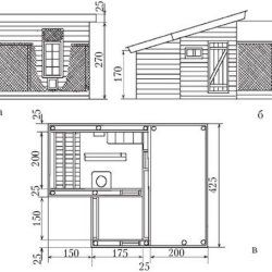 Un desen casa de casă exemplară pentru puii de găină