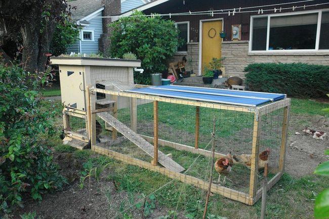 coteț de păsări cu Aviary pe proprietatea privată