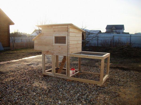 coop de pui mici pentru puii de găină 5