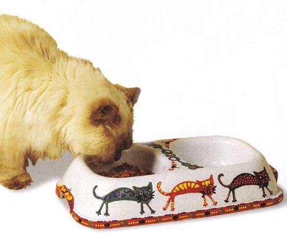 Miska pre mačky s ich vlastných rúk
