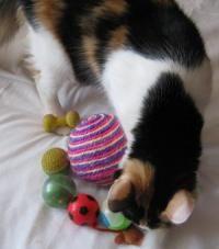 Guličky pre mačky