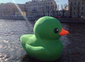 Vysvetliť nevysvetliteľné: Ako kačica pláva?