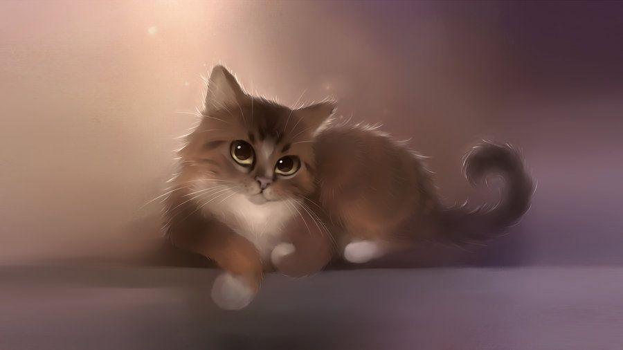 Mačky na ploche