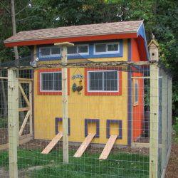 Casa de colorat pentru puii de găină