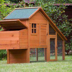 Casa originală cu un adăpost pentru puii de găină