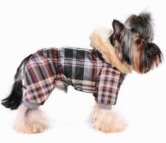 psie oblečenie