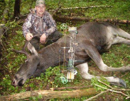 Moose lov sa samostrelom