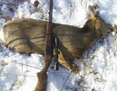 Lov na sibirskog srna