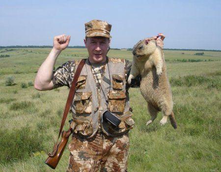Potraga za Marmots: Tajne i Značajke