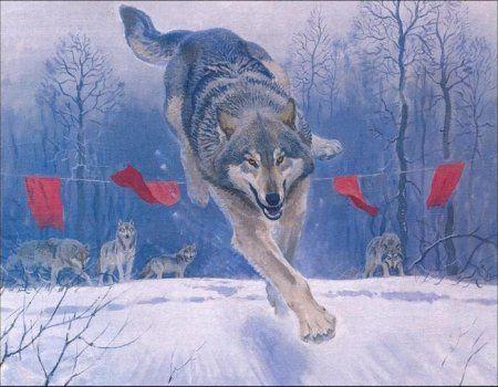 Lov za vukove u regiji Tambov