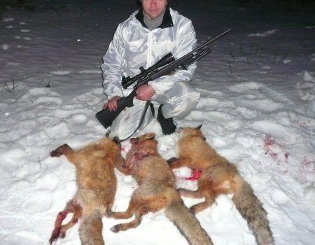 Lov na zeca i lisicu sa puškama