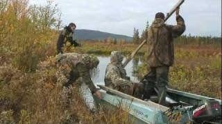 Lov sa ulaza u ronjenje patke su crna, Sauk, crna velika crna divlja patka