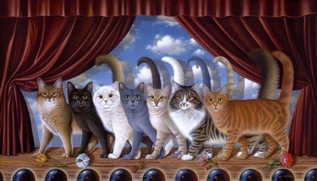 masa de culori pisici