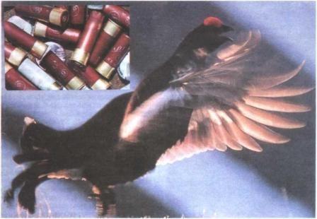 Oružja i streljiva za brdski igre