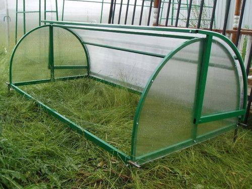 Greenhouse žitnica od polikarbonata za kupovinu