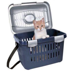 Провеждане Cat