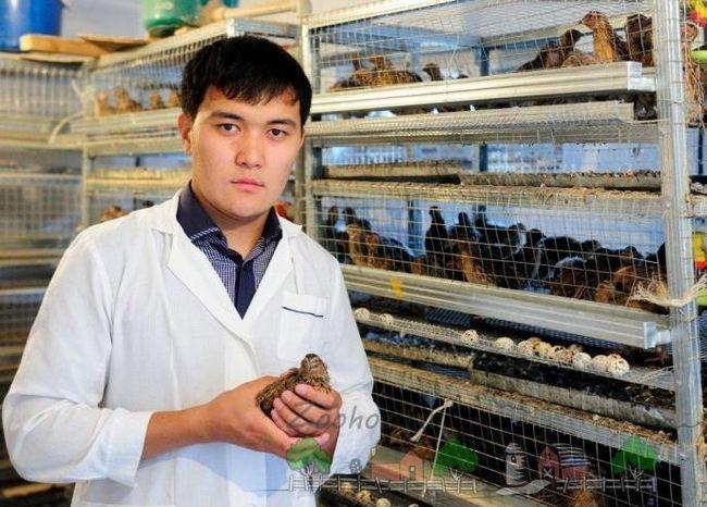 Tânăr fermier care deține o prepeliță