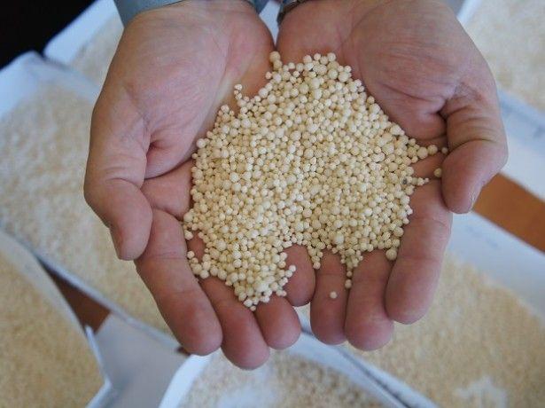 Minerálne hnojivá a organické - hroznový hnojiť?