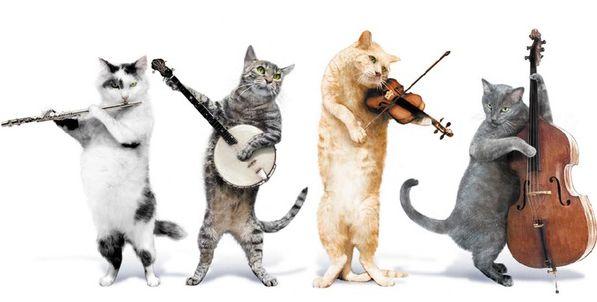Grupa Jingle Cats