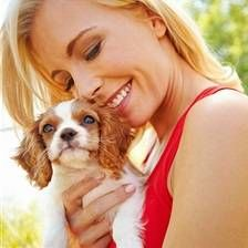 Psie plemená pre začiatočníkov - názov, krátky popis toho, prečo sú vhodné pre ľudí, ktorí nemali psy