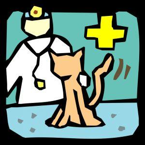 Посещение на ветеринар