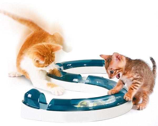 Липса на апетит при котките