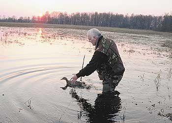 Hunter je ponašanje u lovu sa mamac