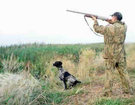 Rusija Hunting Pravila