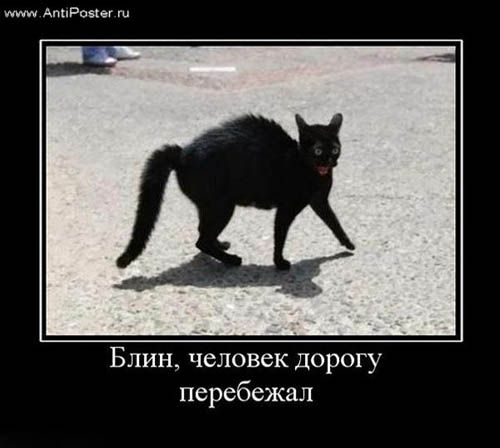 znamenie o čierne mačky