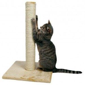 Привикнат котката на надраскване пост