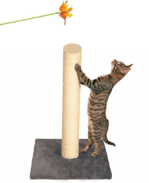 Obișnuiți pisica la post scarpinatul