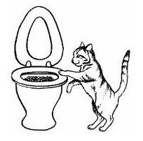 Привикнат котката в тоалетната