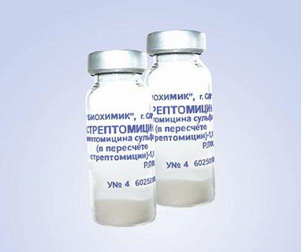 Streptomicin za liječenje bronhopneumonija teladi