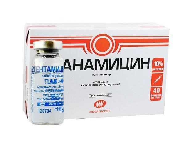 Kanamicin za liječenje upale pluća