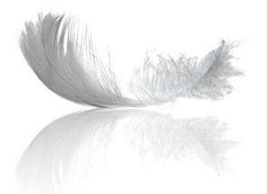Perje i paperje - koristiti guska poklone