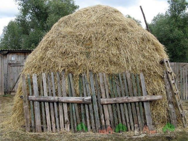 Haystack în sat
