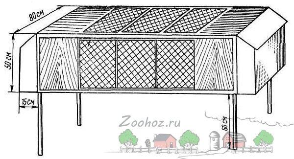 Foto diagrame celulă desen pentru cocoșul de mesteacăn