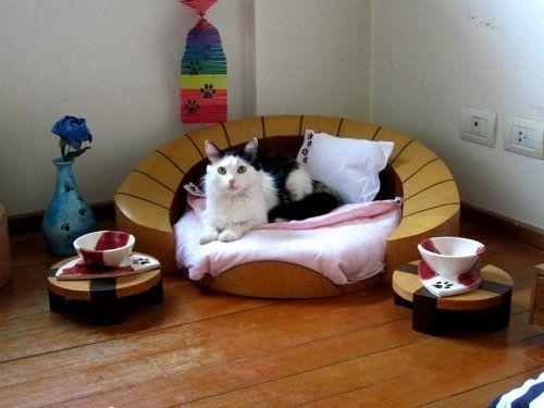 Spálňa pre mačky