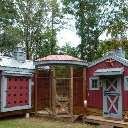 Total cabana pentru puii de găină
