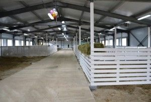 Camera pentru oi la fermă