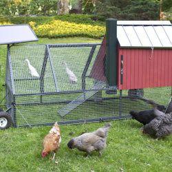 Casă mobilă pentru găini