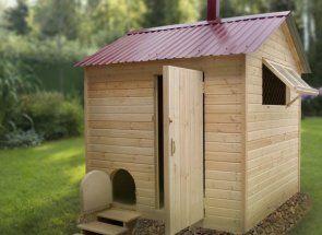 Construi o casă pentru rațe