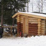 casa solida găină de iarnă cu bușteni