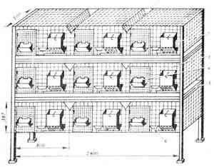 Fig. 4 cuști cu trei etaje pentru iepuri: I - iesle; 2 - alimentator