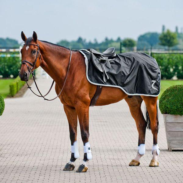 Abajlija i deka na konju