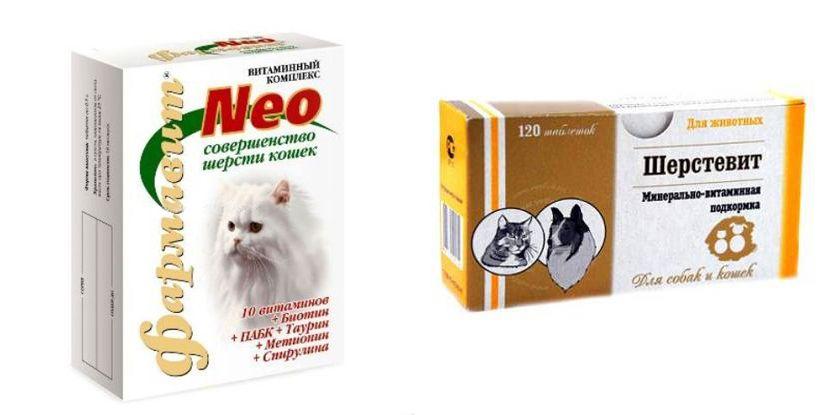 Vitamini za mačke krzno