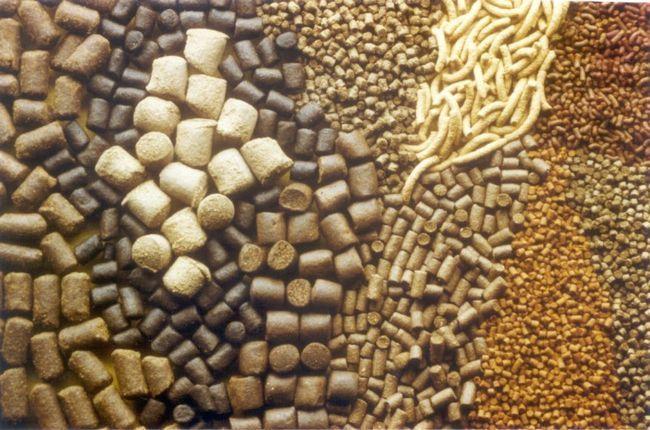 Furaje în granule de diferite tipuri